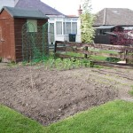 Our vegetable patch